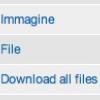 Esempio di campi File, Image e Download
